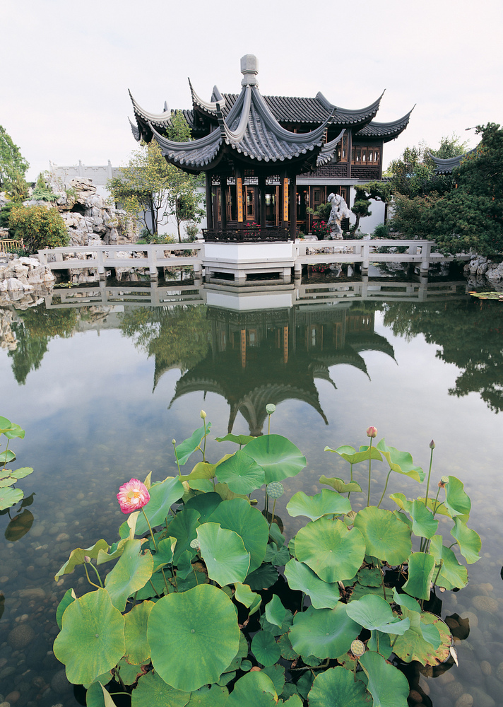 ccg teahouse and lotus teahouse at portland chinese classical garden - Chinese Garden Portland