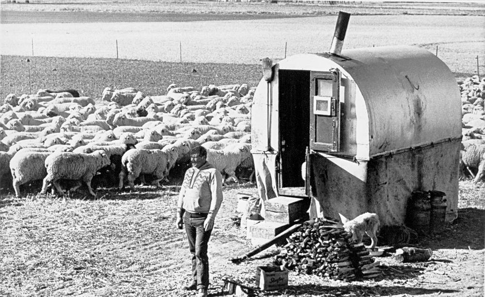 Basques - The mobile shepherds wagon ...