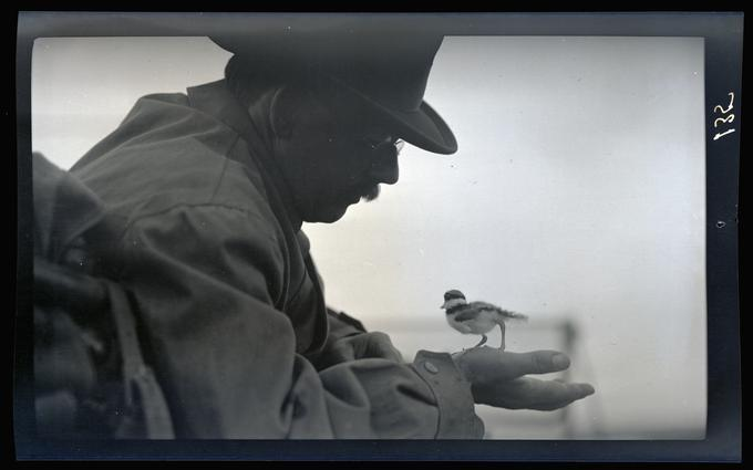 Dallas Lore Sharp holding a killdeer, Malheur Lake, 1912
