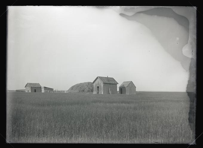 A shack on the north side of Malheur Lake, 1908