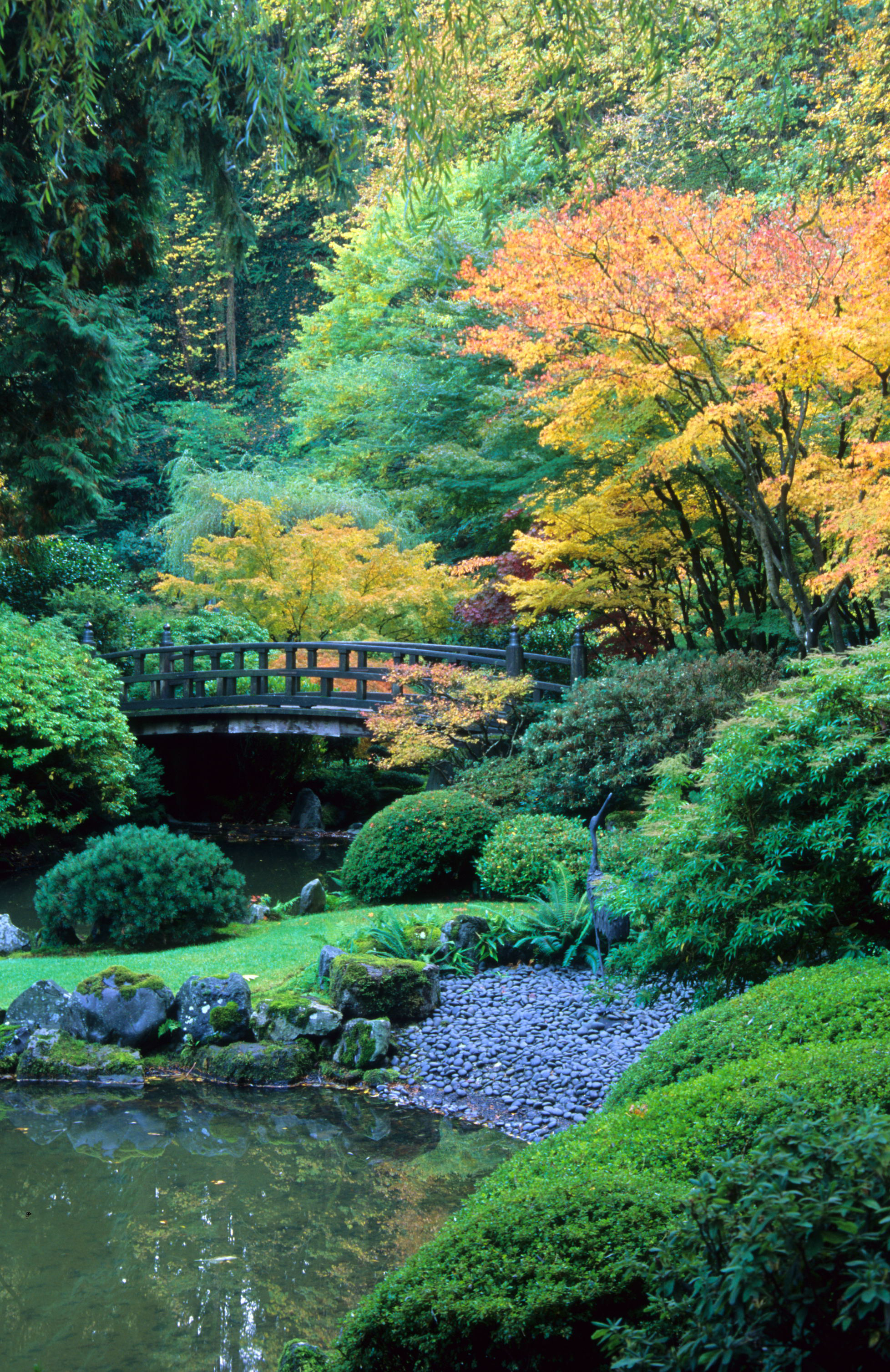 Pictures Of Japanese Gardens. Awesome Japanese Garden Rotary ...