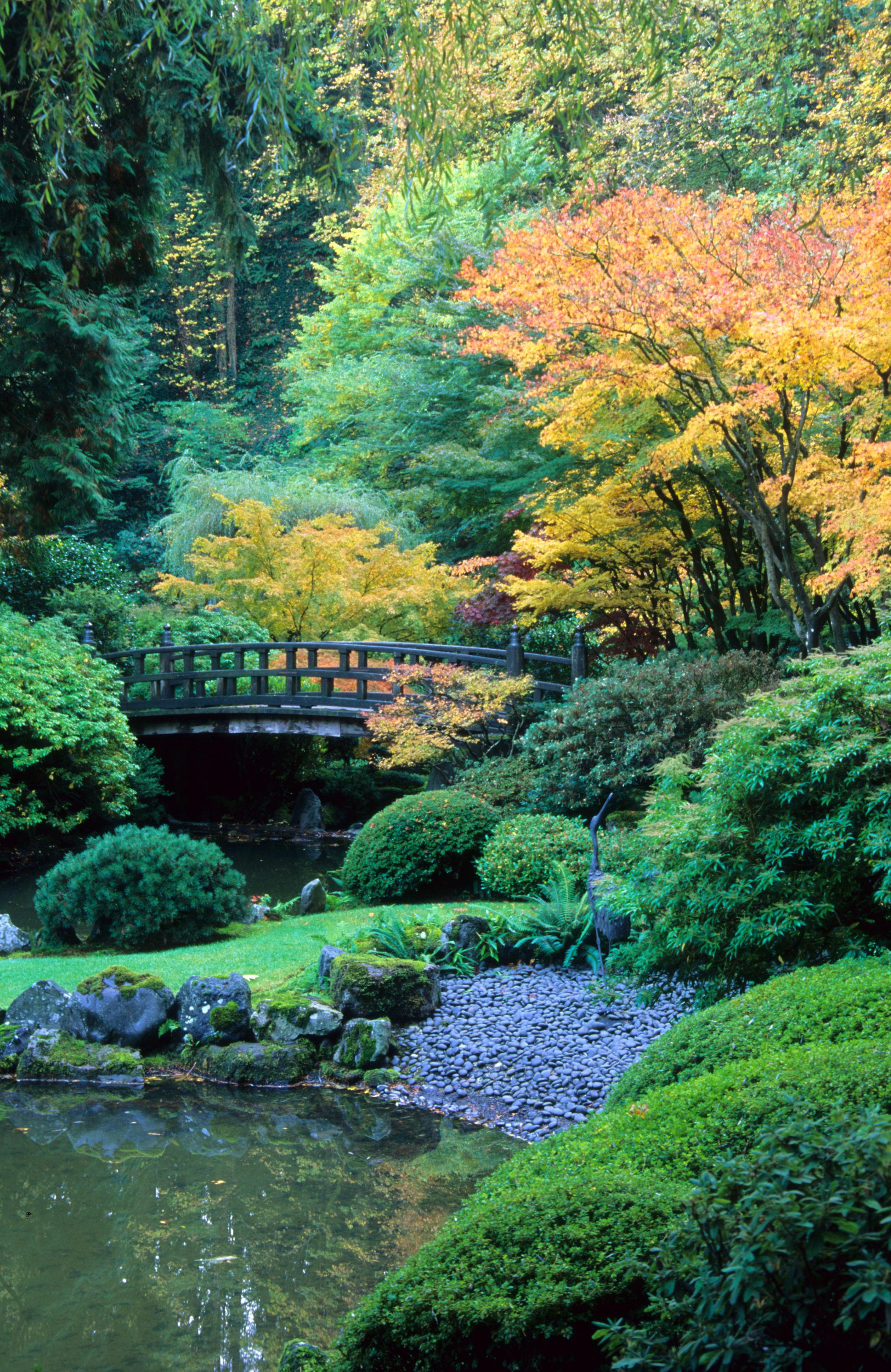Portland japanese garden for A japanese garden