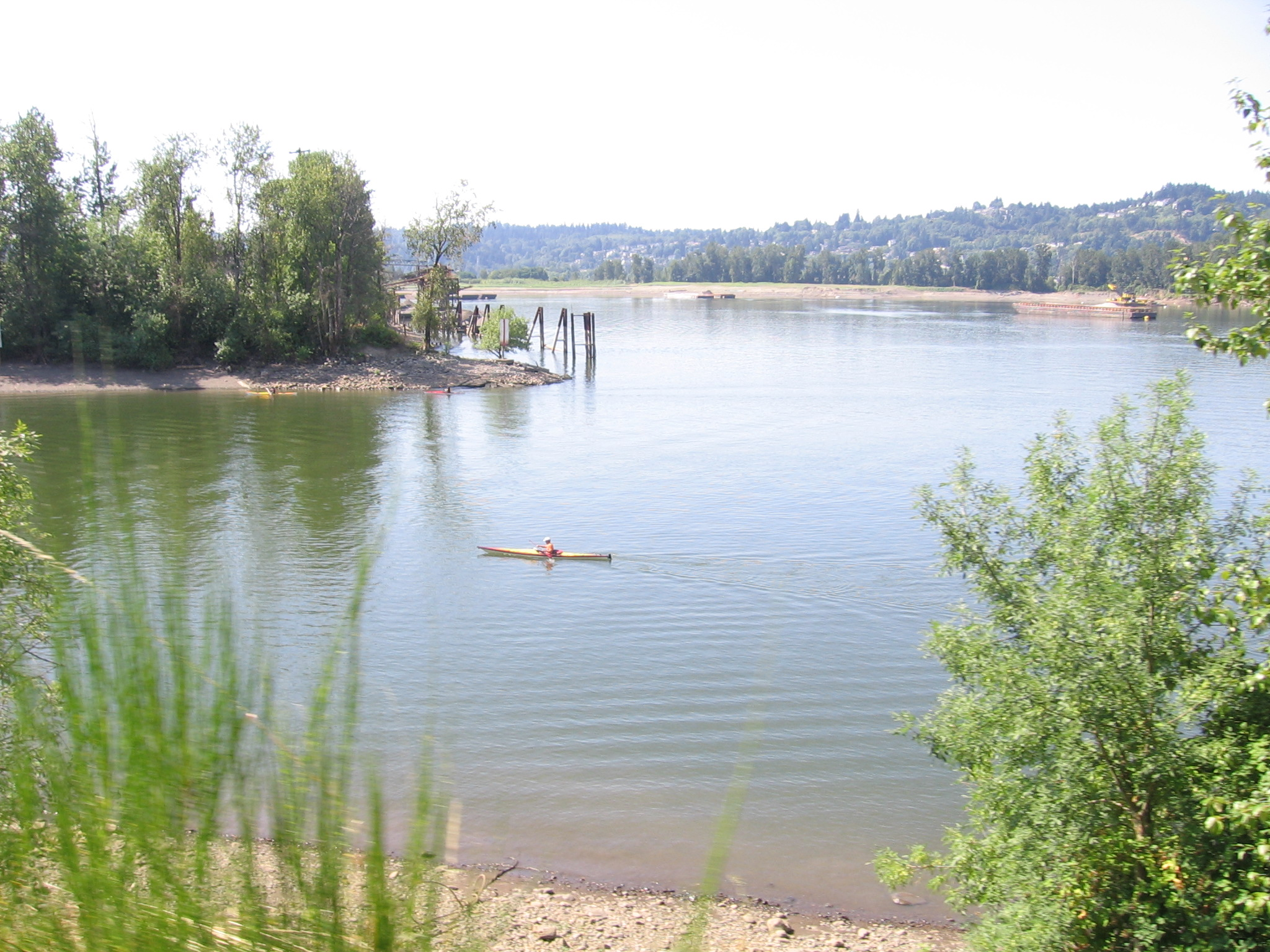 Springwater Corridor, along Willamette R, 5, Aug 21 2011
