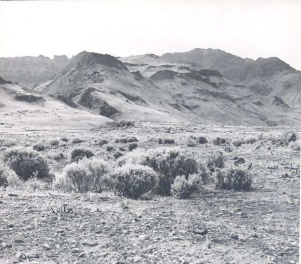 Alvord Valley, Steens Mountains, 1932