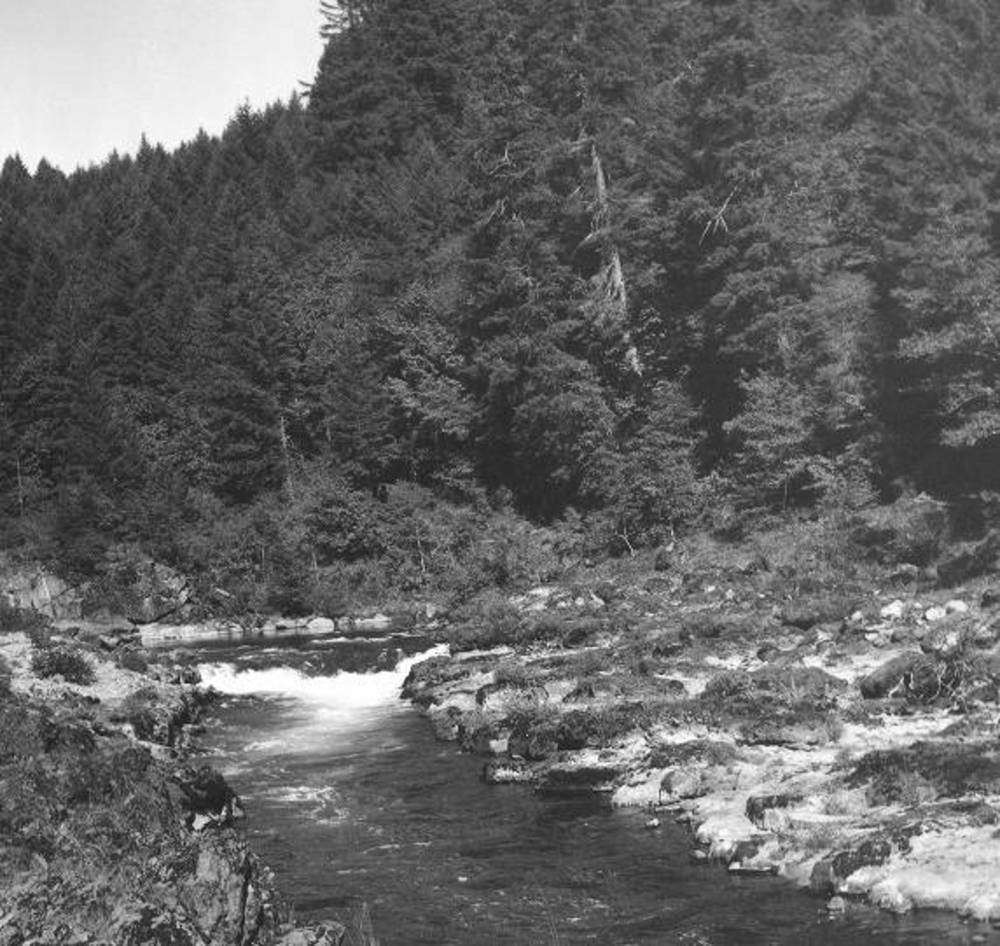 Umpqua R., N. Umpqua narrows