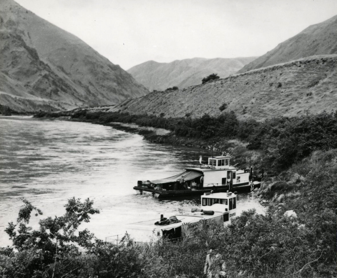 Excursion boats moored at Temperance Creek at Snake River, c.1951