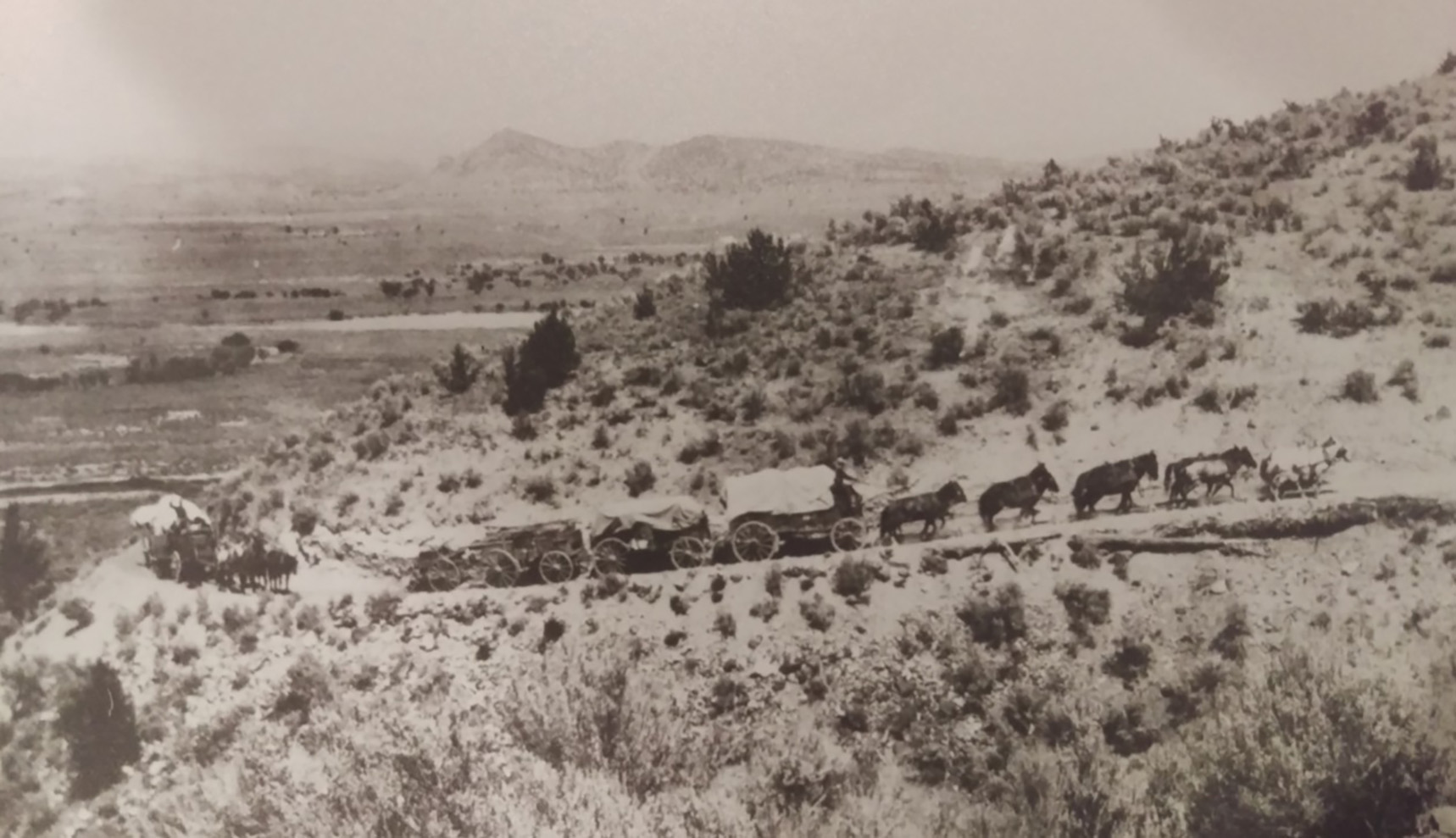 Freight wagons climbing the grade west of Prineville, c. 1915.