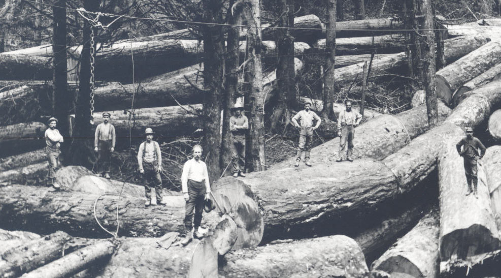 Loggers in Clatsop County