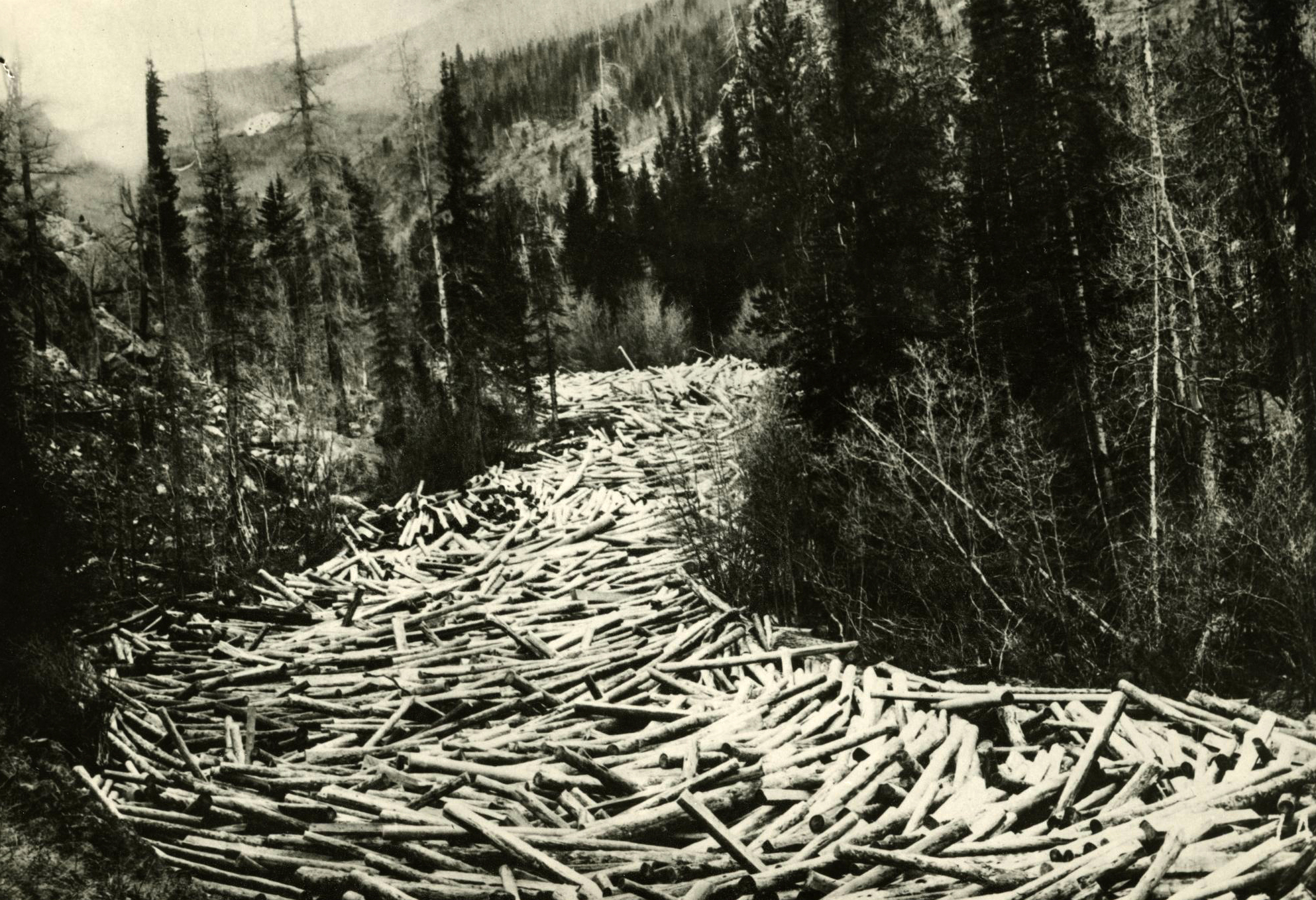 Logs awaiting spring flood to carry them to Columbia River