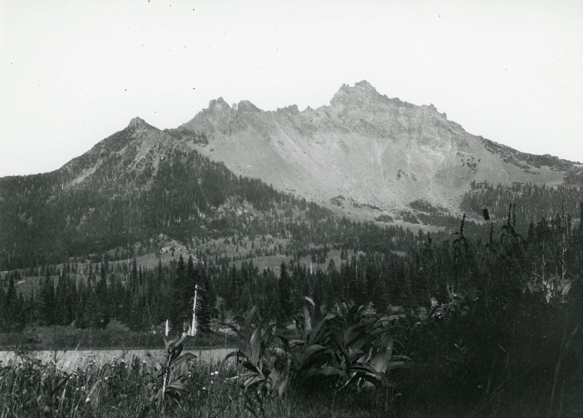 Three-Fingered Jack, c. 1923, by Arman Furrer