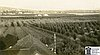 Bear Creek Orchards, Medford, early 1900s.