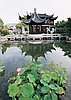 Teahouse at Portland Chinese Classical Garden, with lotus in foreground.