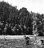 Rainbow trout fishing on the McKenzie River near Nimrod, 1960.