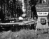 Rogue River National Forest Campground at Fish Lake, July 1970.