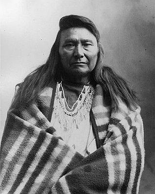 heinmot tooyalakekt chief joseph 18401904