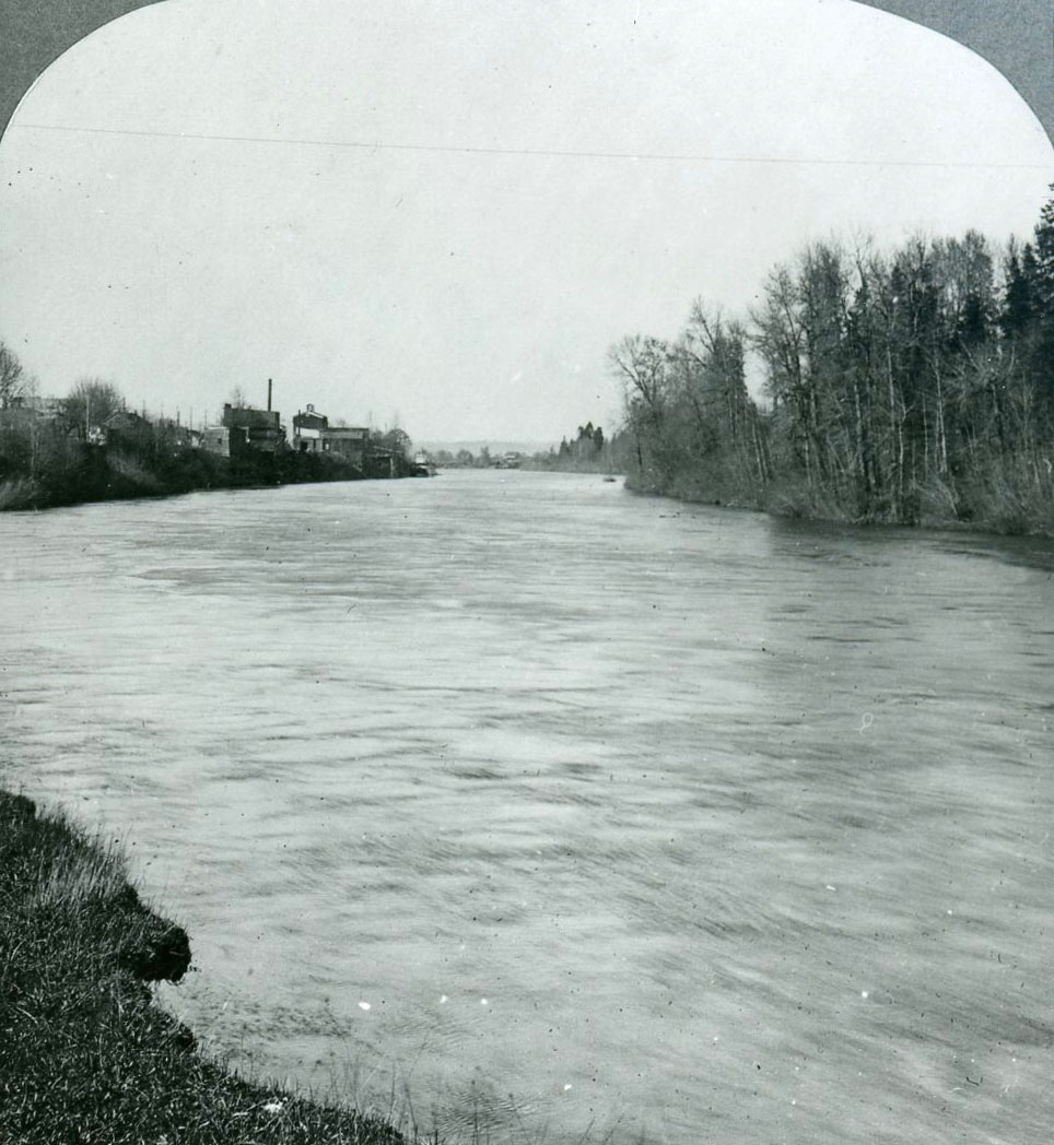 Willamette River passing Corvallis (left), c. 1905